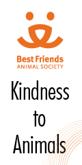 givebest friends Animal society